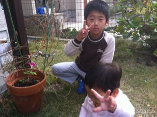 image-20111105124212.png